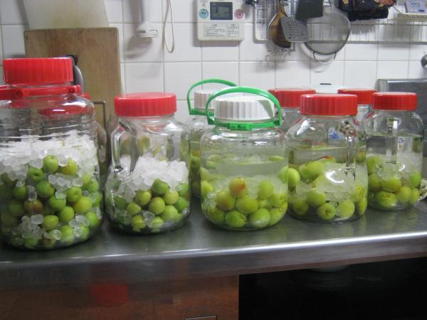 梅酒と梅シロップ