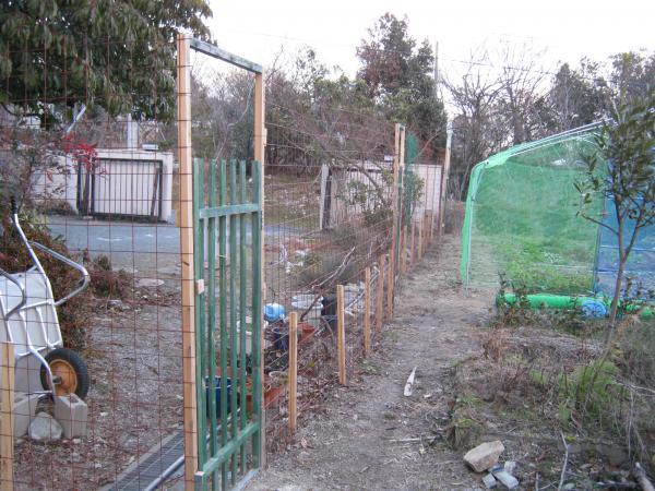 わらびの柵2
